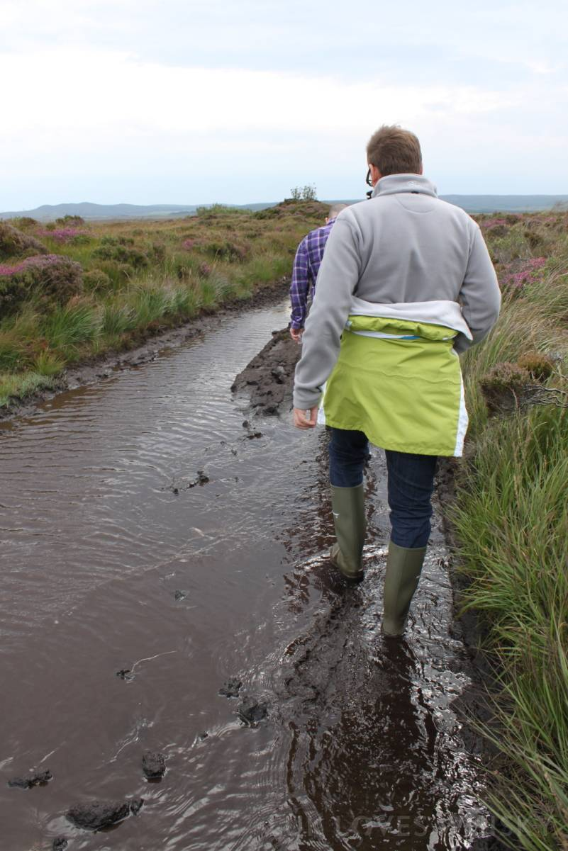 Here wellies were essential Laphroaig Distillery, pola wydobywania torfu, peat bogs