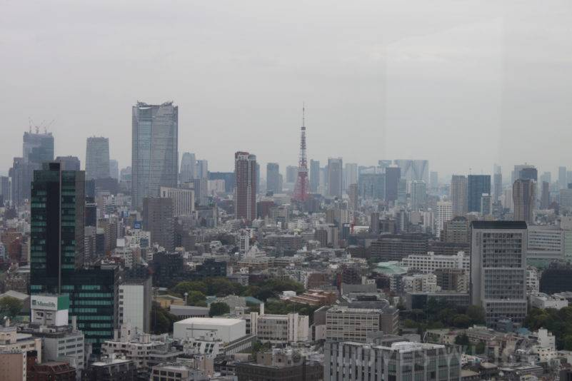 Tokio seen from Shibuya